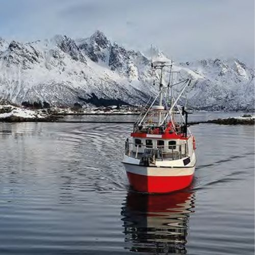 Our Fishing Fleet